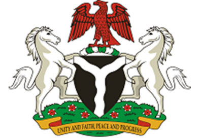FGN launches 48hrs Visa Approval System for Foreign investors