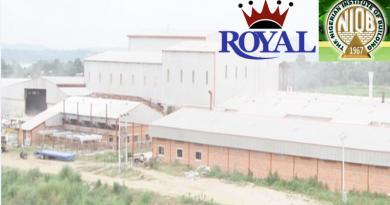 Royal Tiles bag NIOB recognition – The Sun