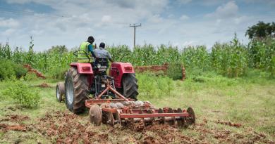 African smallholder farmers