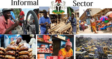INFORMAL SECTOR IN AFRICA