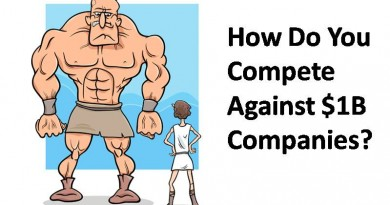 HOW DO YOU COMPETE AGAINST $1B COMPANIES