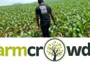 Farmcrowdy celebrates its second anniversary of empowering with close to 8,000 farmers