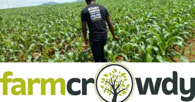 Farmcrowdy partners with Best Foods Fresh Farms to grow reach