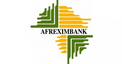 Afreximbank Releases Half-Year Results, Shows $343 million in Gross Revenue