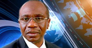 cbn Governor, Godwin Ifeanyi Emefiele