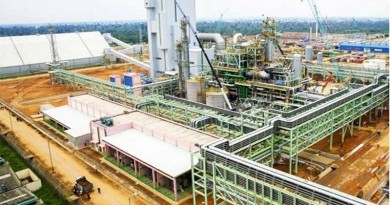 eleme fertiliser PLANT