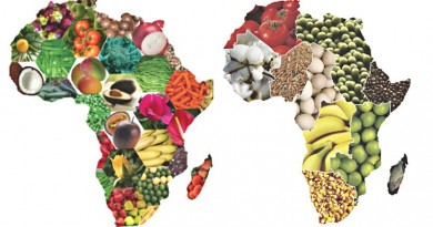 Inter African trade