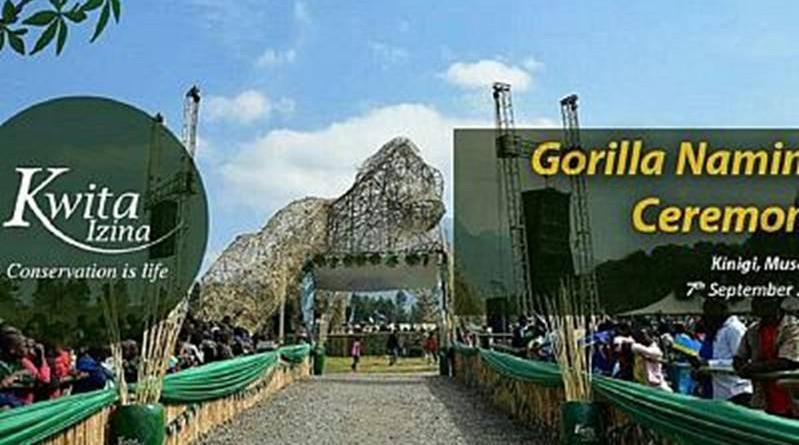 gorilla naming ceremony kwita izina