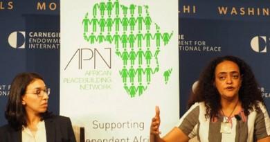 APN Individual Research Grants