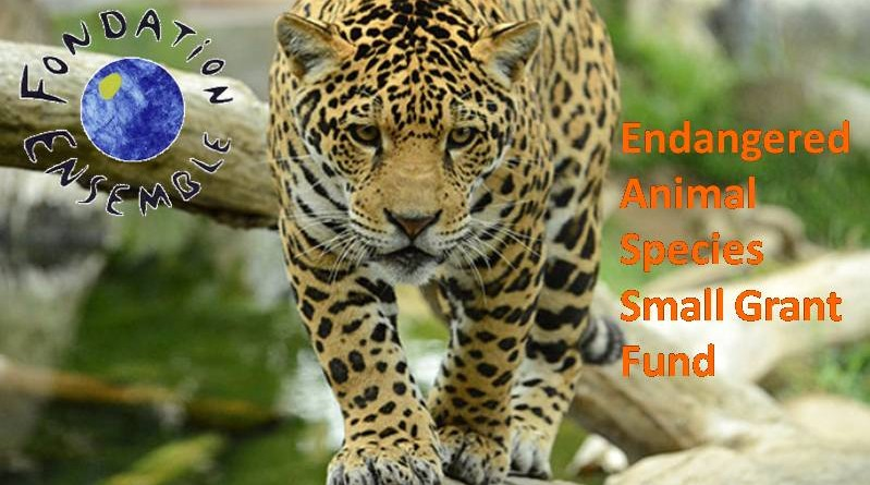FONDATION ENSEMBLE - ENDANGERED ANIMAL SPECIES SMALL GRANT FUND