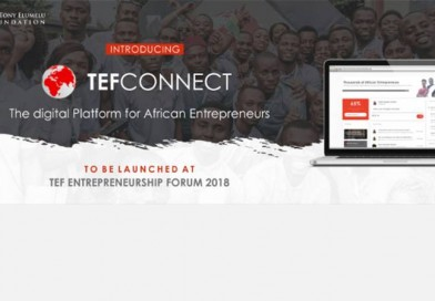 Tony Elumelu Foundation Takes TEFConnect to Intra-African Trade Fair in Egypt