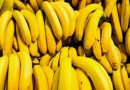 'Streak virus' threatening to wipe out Banana