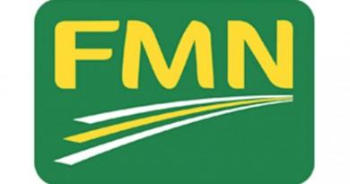 FLOUR MILLS OF NIGERIA FMN
