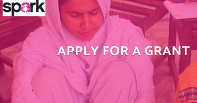 Spark Seed and Early stage Grants to Grassroots Women s Organizations and Initiatives