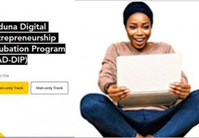 Kaduna Digital Entrepreneurship Incubation Programme (KAD-DIP) 2019 for aspiring Entrepreneurs
