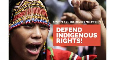 UN OHCHR Indigenous Fellowship Programme
