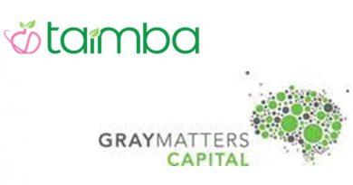 grey matters capital