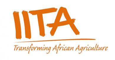 iita international institute of tropical agriculture