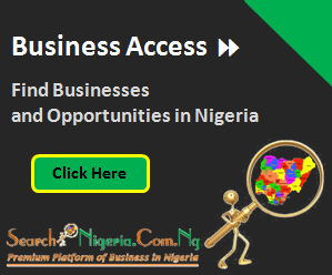 searchnigeria business access