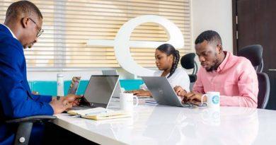 Nigerian startups by endeavor