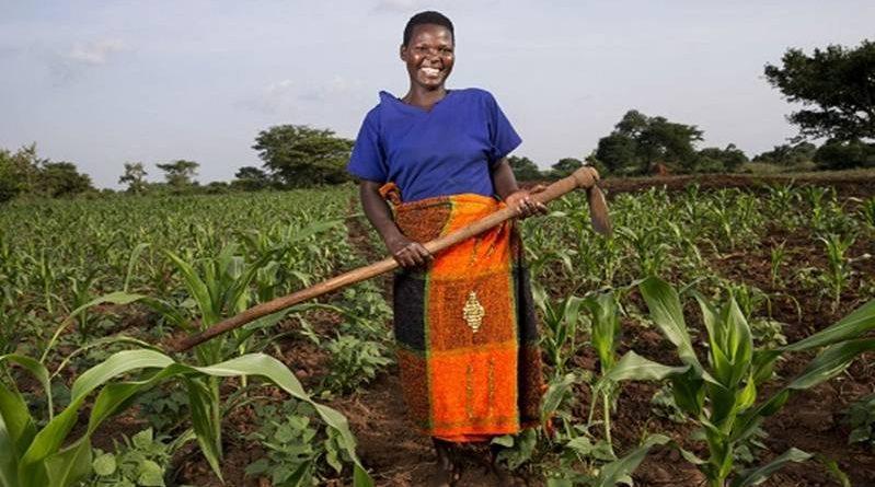 women farmers rural farmers