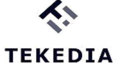 Tekedia Capital